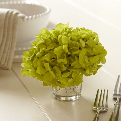 Green Preserved Hydrangea Floral Arrangements in Vase Flower Color: Green