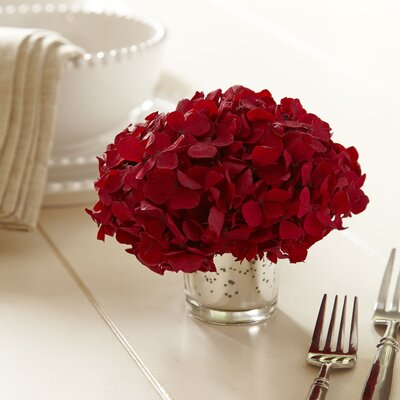 Mini Preserved Hydrangea in Vase Flower Color: Red