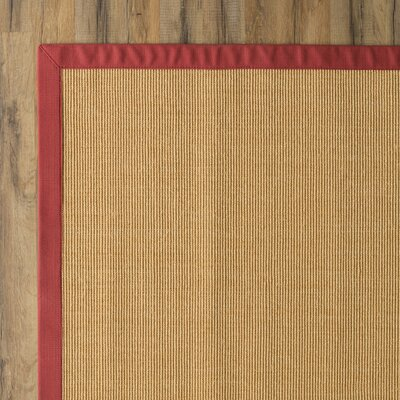 Sisley Hand-Woven Brown Area Rug Rug Size: Rectangle 6 x 9