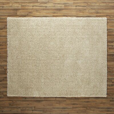 Marcia Rug Rug Size: Rectangle 23 x 39