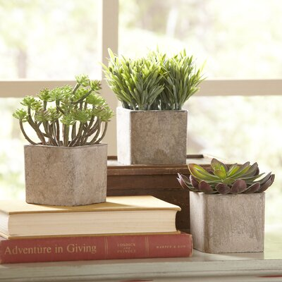 Square Potted Succulent Faux Plant