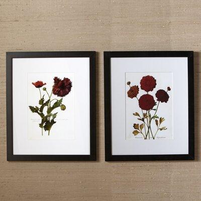 Sepal Framed Prints