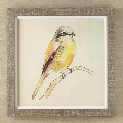 Petite Bird Framed Print