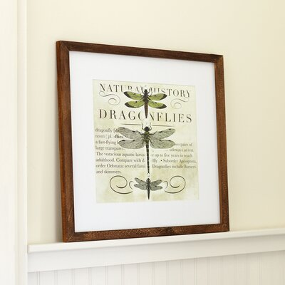 Dragonfly Framed Print II