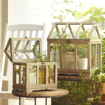 Greenhouse Terrariums