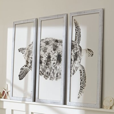 Sea Turtle Triptych Framed Print Color: Gray