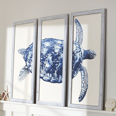 Sea Turtle Triptych Framed Print Color: Marine
