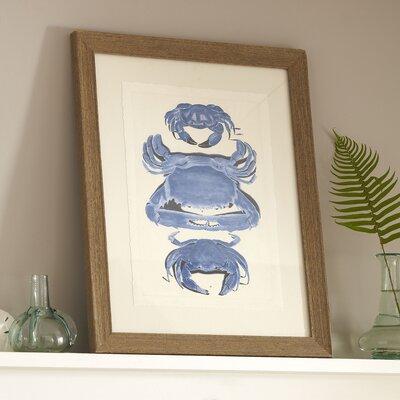 Crab Trio Framed Print