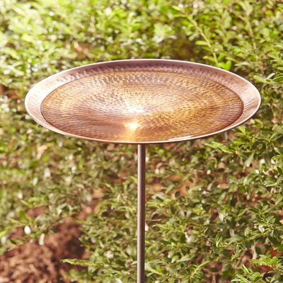 Antique Copper Birdbath with Stand