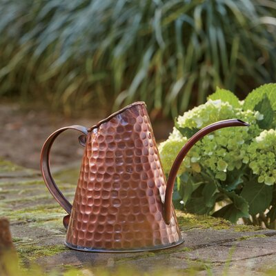 Birch Lane Copper Watering Can