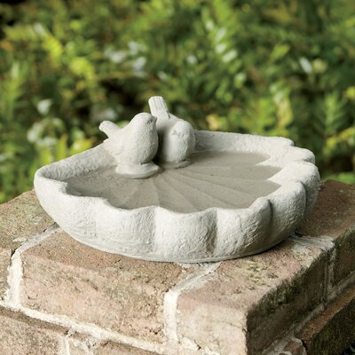 Sparrow Bird Bath