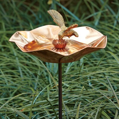 Hummingbird Birdbath with Stand