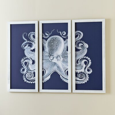 Octopus Triptych Framed Print
