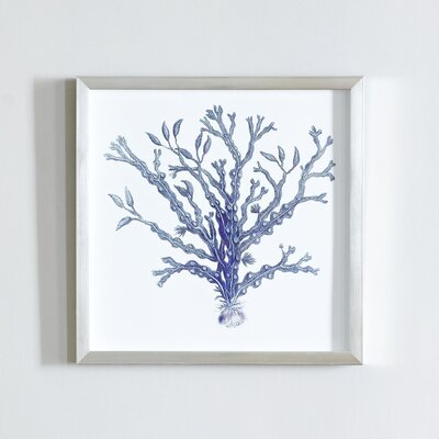 Indigo Coral Shadow Box I