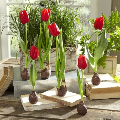 Red Faux Tulips (Set of 2)