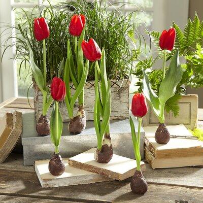 Flowers Faux Tulips in Glass