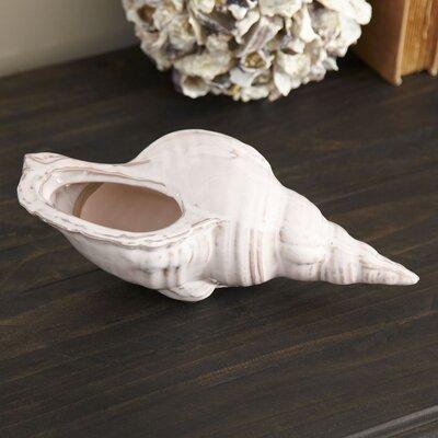 Seashell Vessel Finish: White