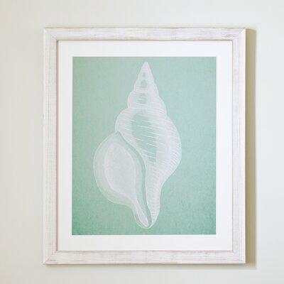 Seafoam Seashell Framed Print II