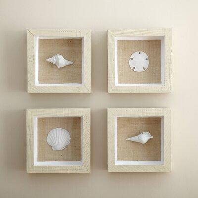 Seashell Wall Décor Set