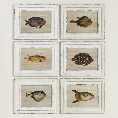 Tropical Fish Framed Prints