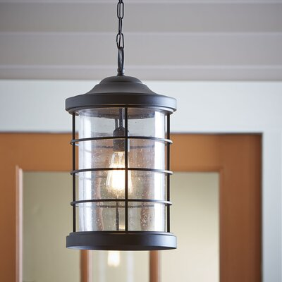 Alanson Outdoor Hanging Lantern Finish: Black