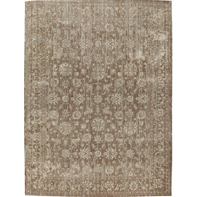Cynthia Rug Rug Size: Rectangle 33 x 53