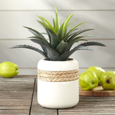 Faux Star Succulent Ceramic Pot Planter