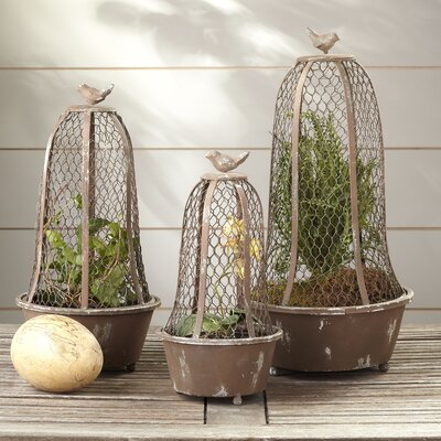 3 Piece Perch Wire Cloche Terrarium Set