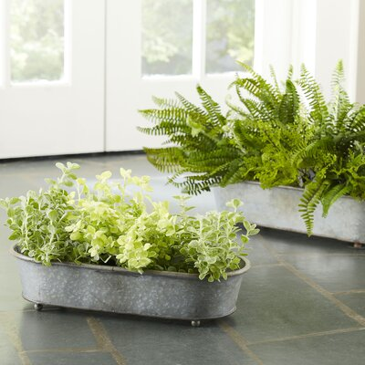 2-Piece Galvanized Steel Pot Planter Set