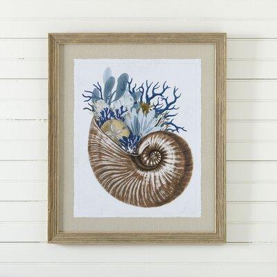 Mollusk Framed Print I