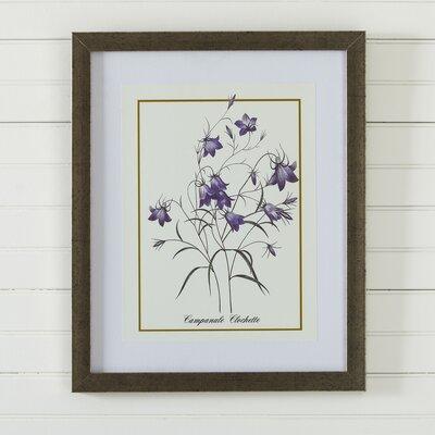 Vintage Floral Framed Print VII