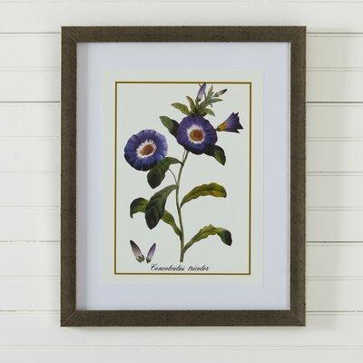 Vintage Floral Framed Print VIII