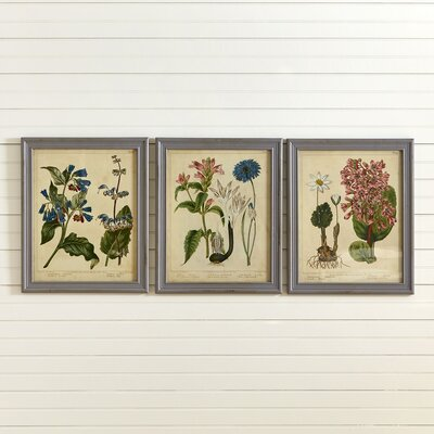 Botanical 3 Piece Wall Decor Set (Set of 3)
