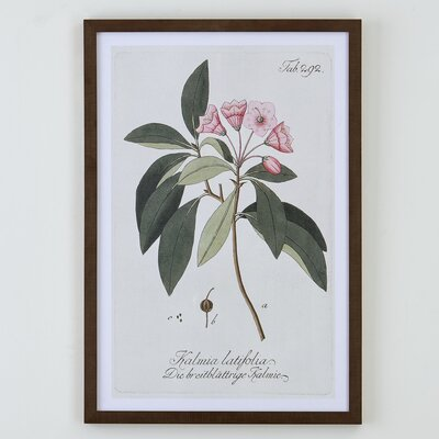 Everly Botanical Framed Print II