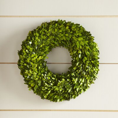 Thelma Preserved Boxwood Wreath