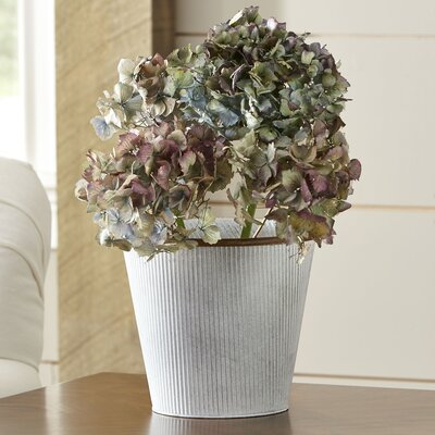 Moyer Metal Pot Planter Size: 3