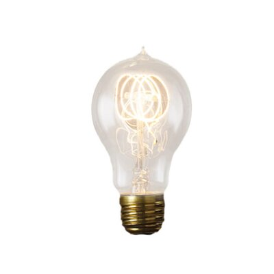 Birch 60 Watt Round Edison Bulb (Set of 4)