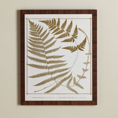 True Fern Framed Print I