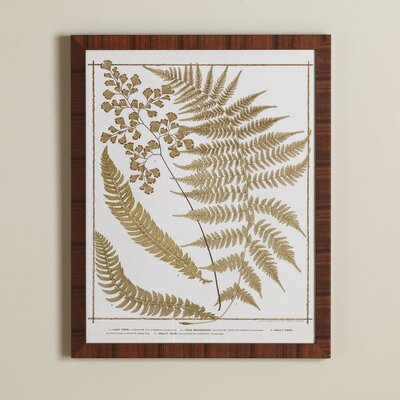 True Fern Framed Print II