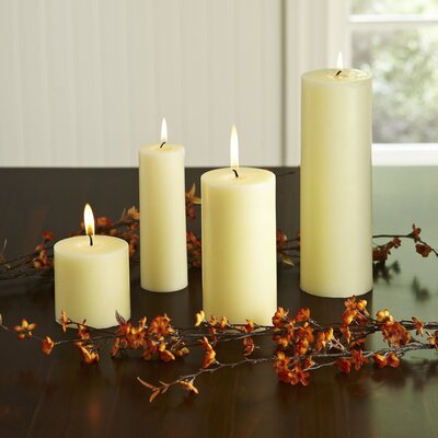 Birch Lane Pillar Candle