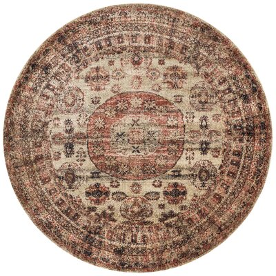 Lucien Champagne/Beige Area Rug Rug Size: Rectangle 37 x 57