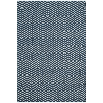 Kris Hand-Woven Navy Area Rug Rug Size: Rectangle 4 x 6