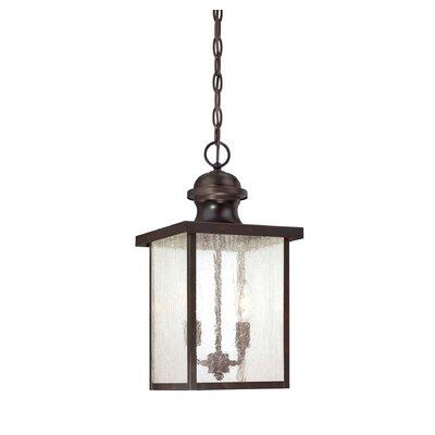 Curram Outdoor Hanging Lantern