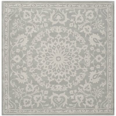 Rug Rug Size: Square 6