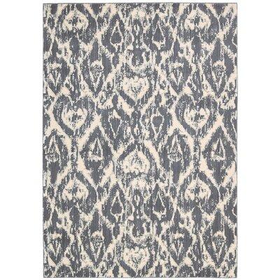 Cressida Dark Gray Rug Size: 36 x 56