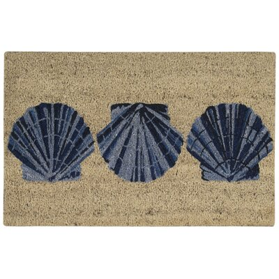 Seashell Welcome Mat Rug Size: 2 x 3
