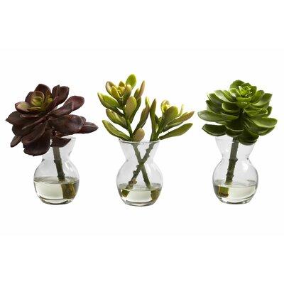 3-Piece Faux Succulent Set
