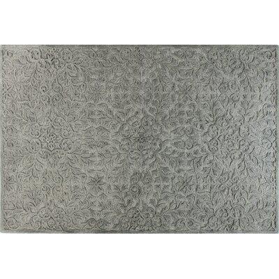 Naomi Slate Rug Rug Size: 86 x 116