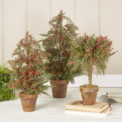 Regent Cypress Topiary