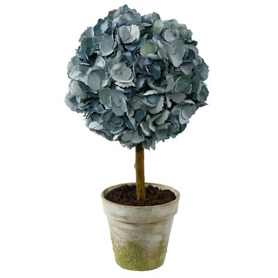Dried Hydrangea Topiary in Clay Pot